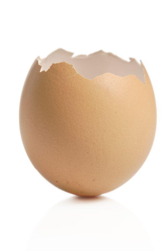 Brunt eggeskall